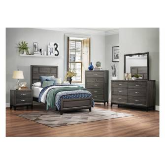 1645T-Gr Davi Twin Bedroom Set - Gray